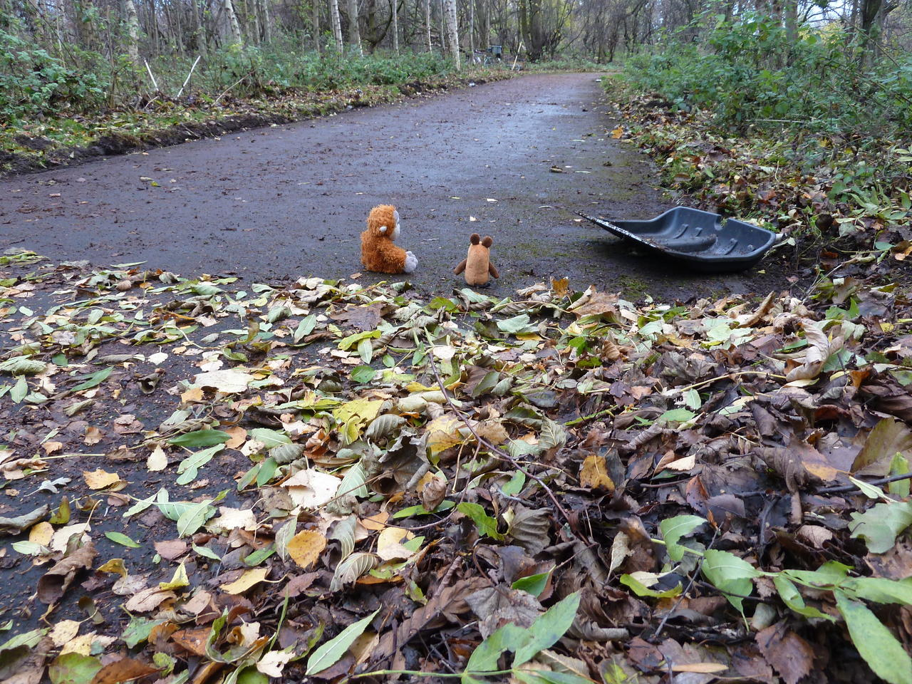 Pongo and Mouse next to their shovel, looking back where the path is clean